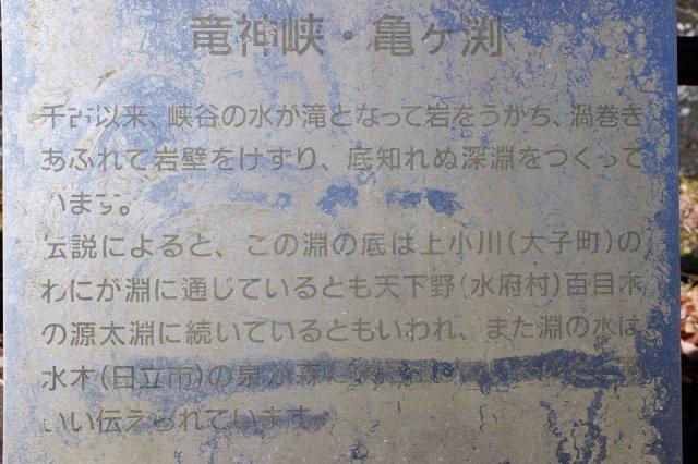 竜神大吊橋 竜神峡 亀ヶ淵 2020.3.15 068