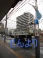 1-DSCN8282-001.jpg