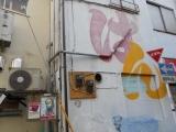 1-DSCN8598.jpg
