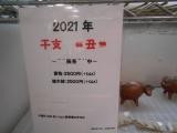 1-DSCN9655_20201211165902acc.jpg
