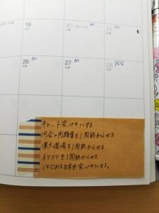 DSC_1817.jpg