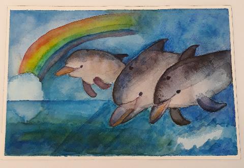 Jumping dolphin family