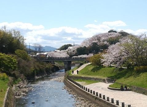 1 竜田公園 後方は三室山