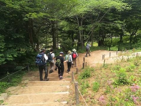 7 六甲高山植物園を散策