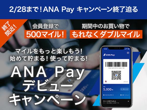 ANAは、キャンペーンエントリー&新規登録で500マイルがもらえる「ANA Payデビューキャンペーン」を開催!