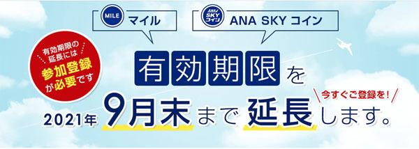 ANA、マイル・ANA SKY コインの有効期限延長は、参加登録が必要!