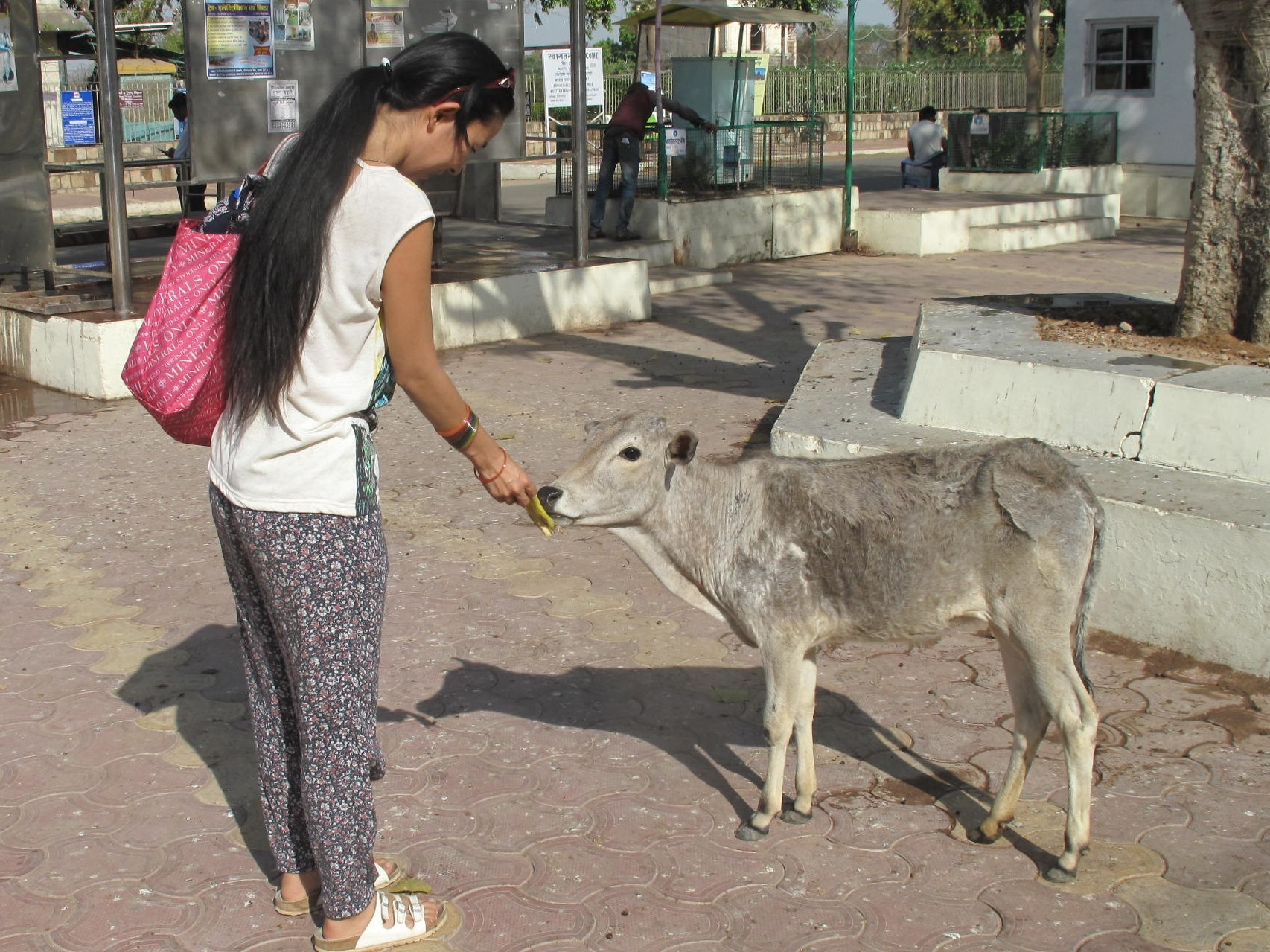 toro enfants prtrait sari etc (24)