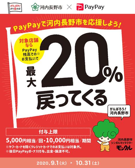 河内長野市× PayPay