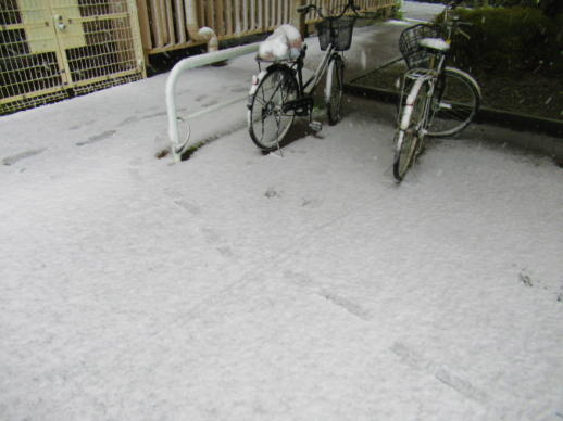 202  まさかの積雪(1)