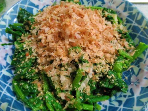 231  かき菜のお浸し(1)