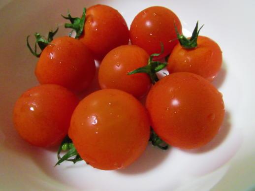 210  トマト(1)