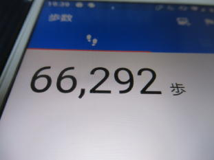 291  b歩数計(1)