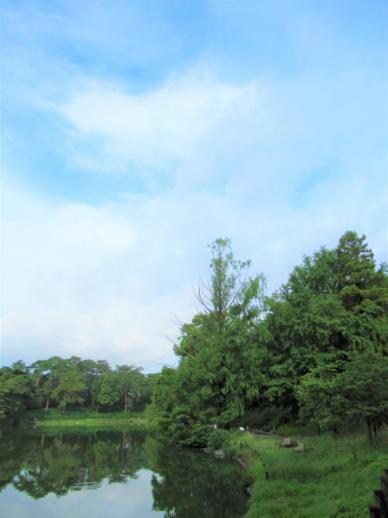 201  空公園(1)