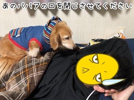 kinako19069.jpeg