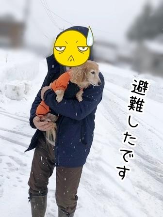 kinako20407.jpeg