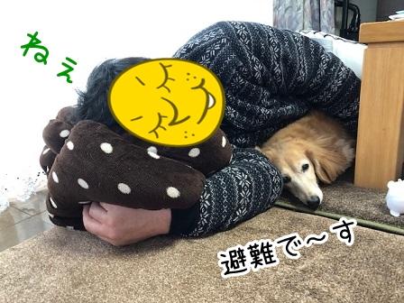 kinako20463.jpeg