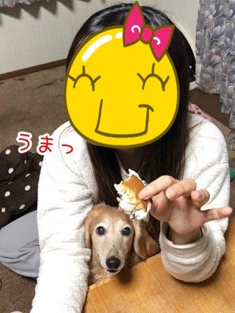kinako20516.jpeg