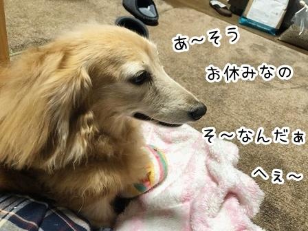 kinako20895.jpeg