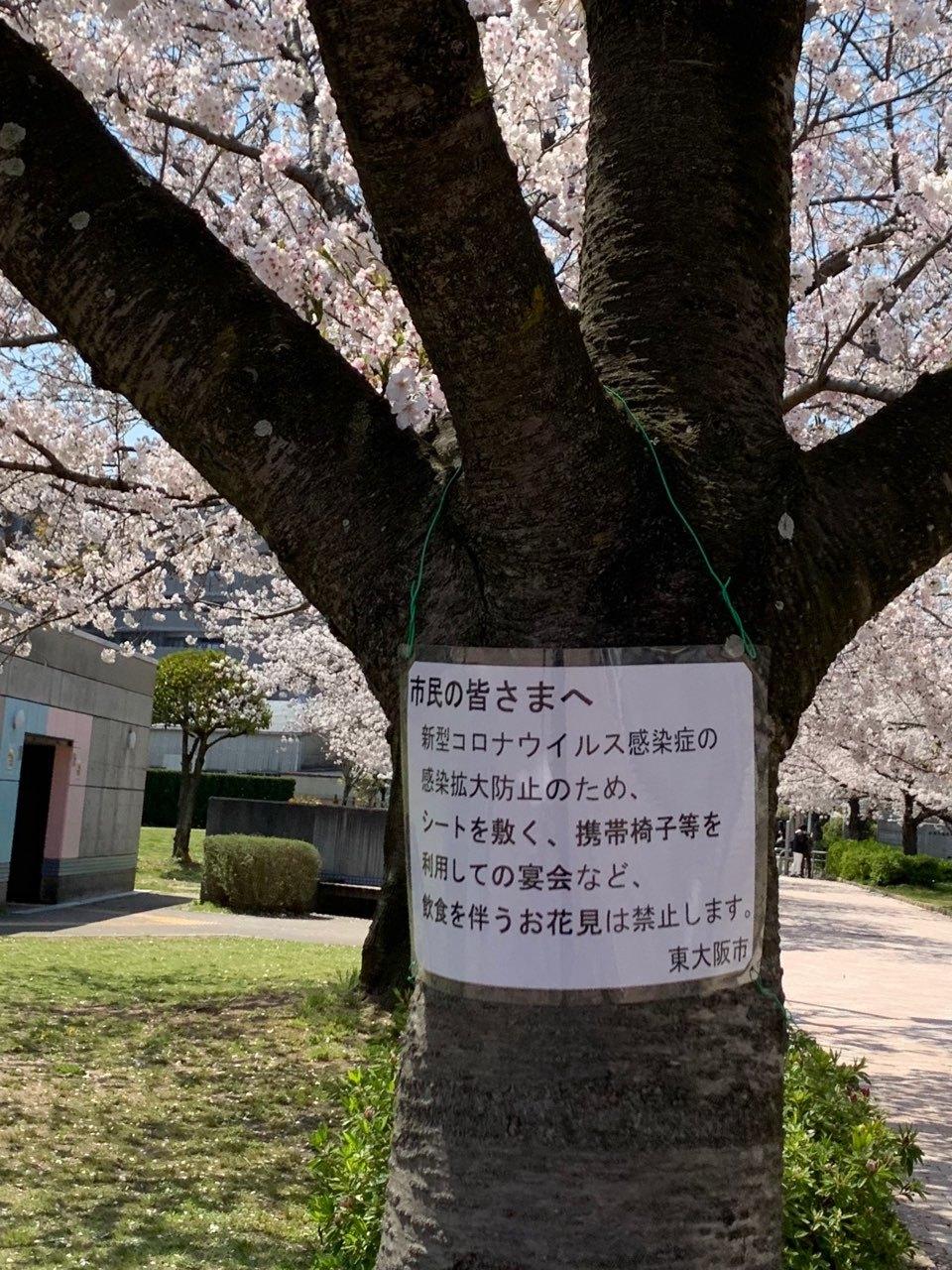 桜コロナ貼り紙