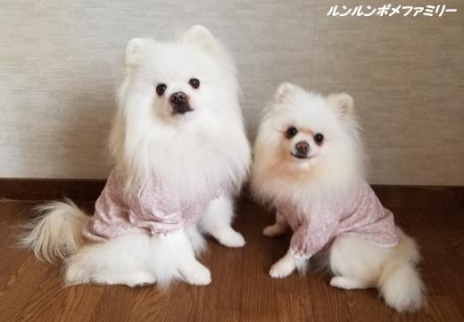 ピンクお洋服横向き