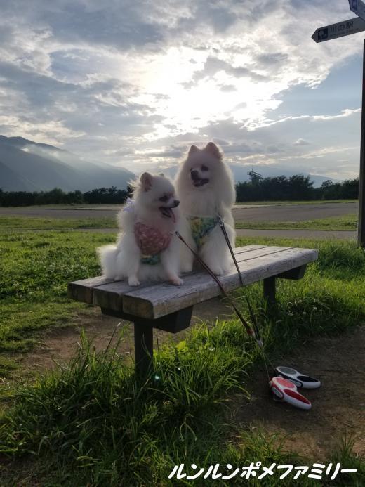 日の出と雲とベンチ