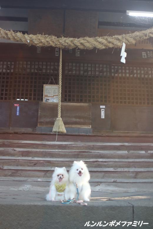 白鳥神社本殿