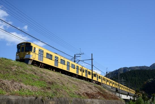DSC_6498.jpg