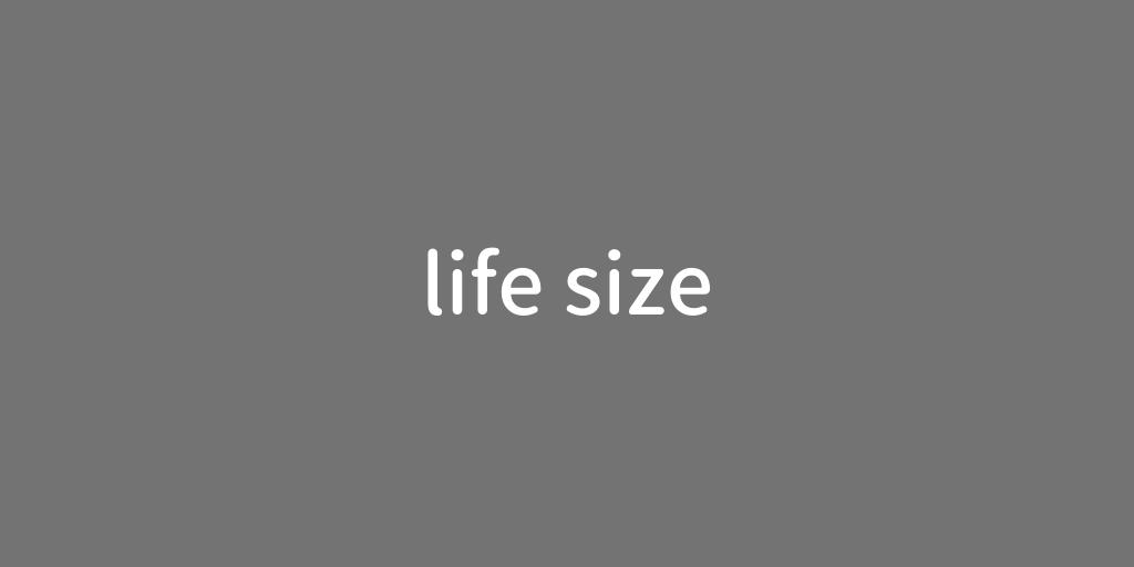 lifesize.png