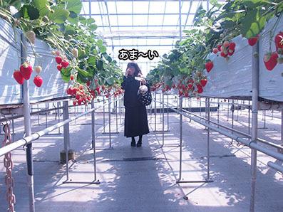 200320_1.jpg