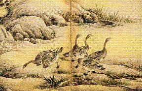 狩野img649 (5)