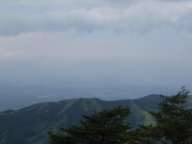 20051355.jpg