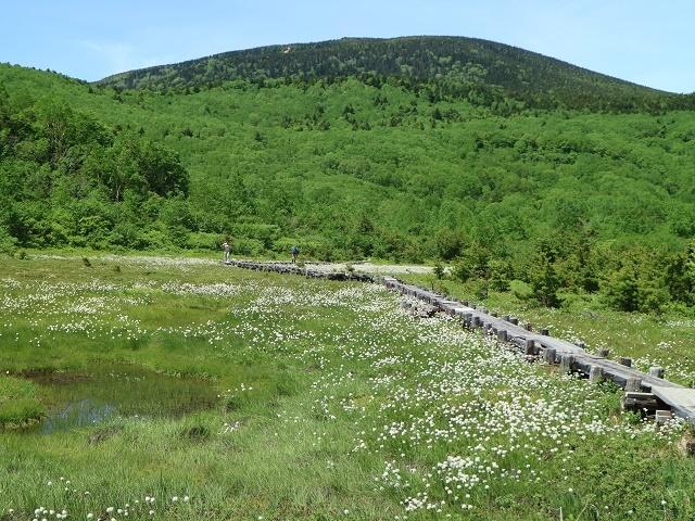 20061705.jpg