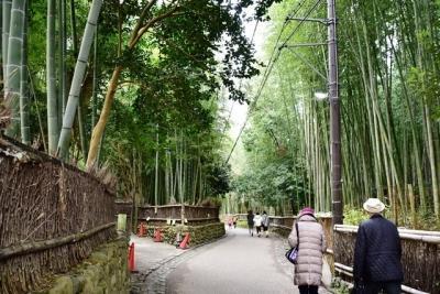 竹林の小径 京都