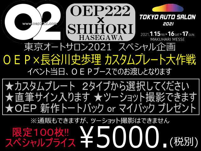 20-11-0220
