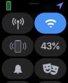 Apple Watch 6 設定 29