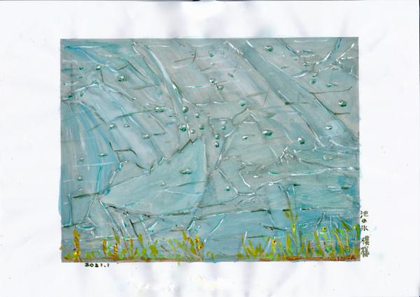 池の氷スキャン