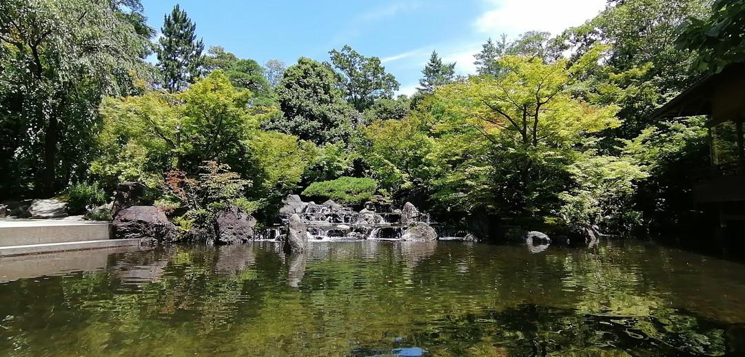 神苑_茶屋池