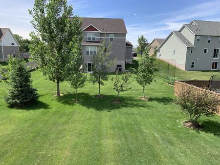 backyard2006.jpg