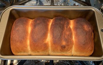 bread07012008.jpg