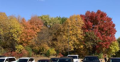 fall2005.jpg