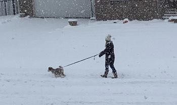 snow10202004.jpg
