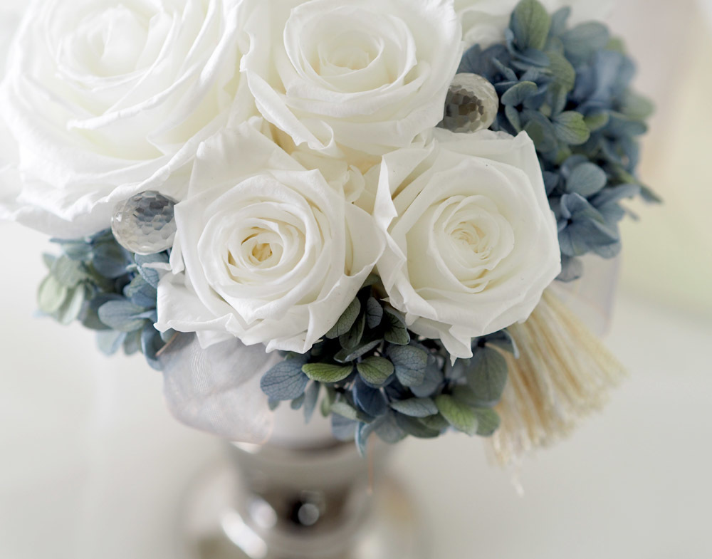 Pure white Rose …♪