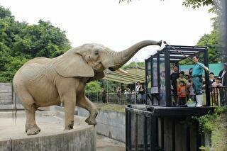 大森山動物園 割引