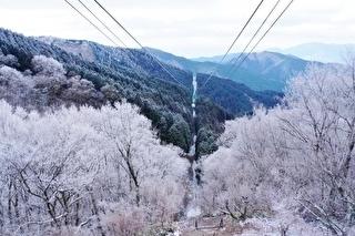 金剛山ロープウェイ 割引