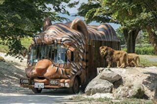 九州自然動物公園 アフリカンサファリ 割引