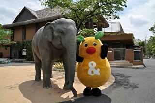 東山動植物園 割引