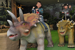 3D宇宙・恐竜館 割引