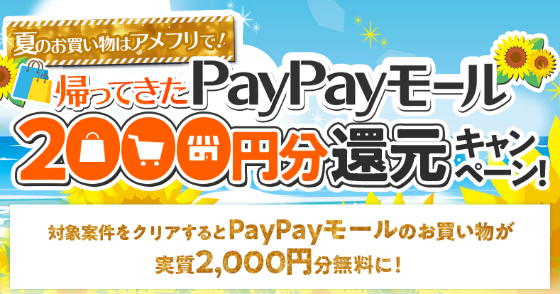 paypay_202008101638135a5.png