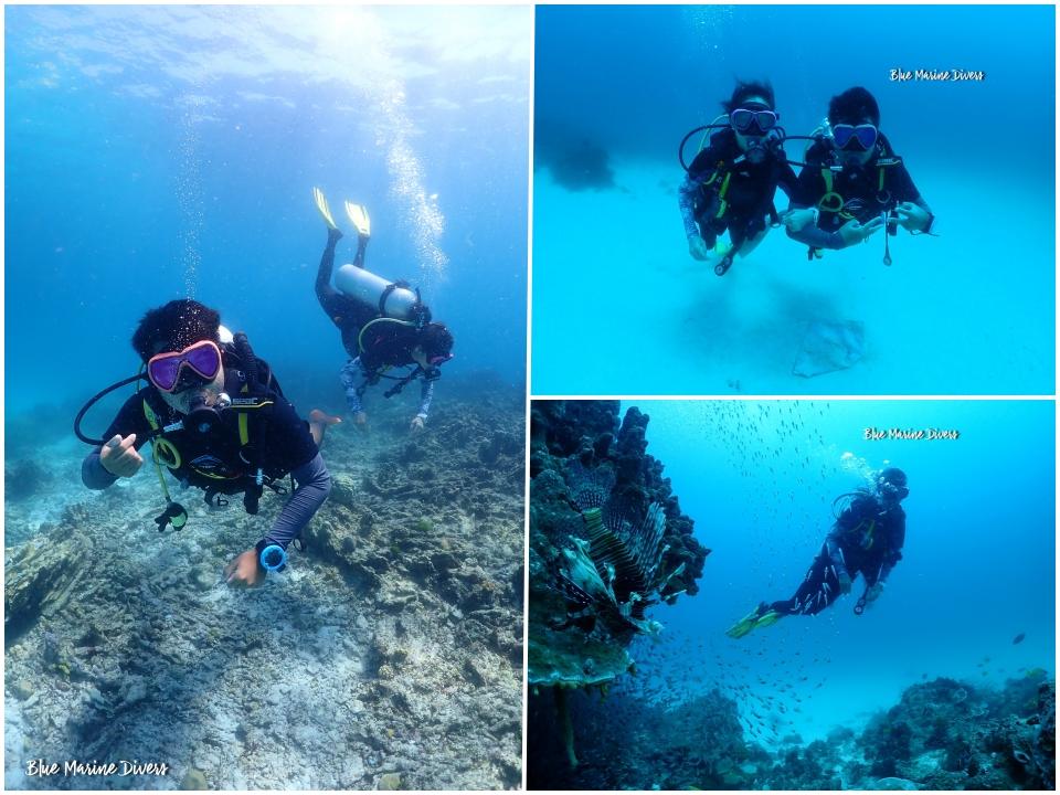 Dive1-1_20210302131610352.jpeg