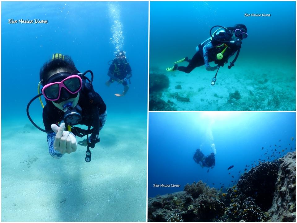 Dive2_20210302131611d97.jpeg